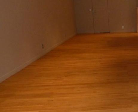 exemple de calepinage avec calepinage pour parquet blog de logiciel online shareware. Black Bedroom Furniture Sets. Home Design Ideas